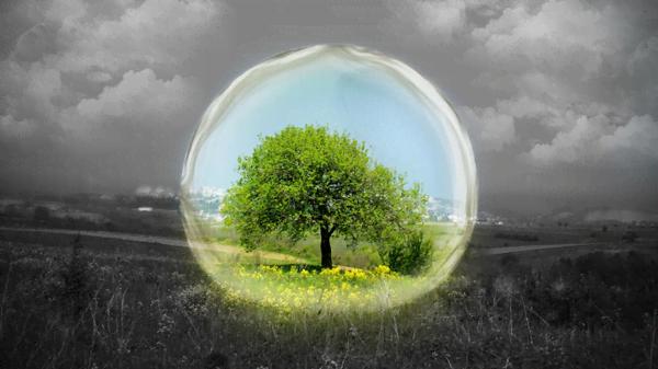 22 Aprile, l'Earth Day: il giorno mondiale della Terra!